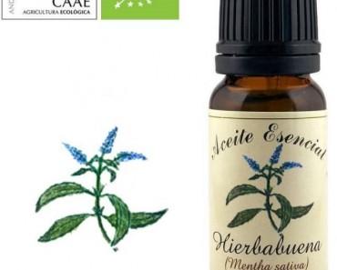 Para que sirve la hierbabuena, aceite esencial
