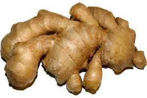 Propiedades del jengibre, para el sistema digestivo