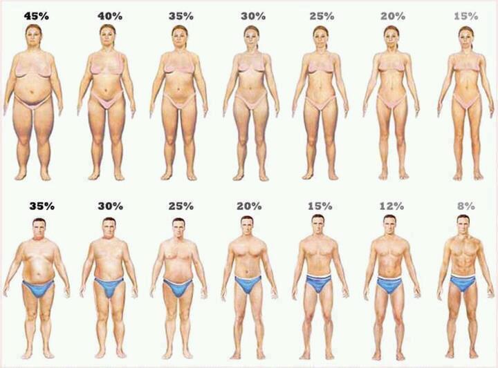 como eliminar la grasa del abdomen inferior