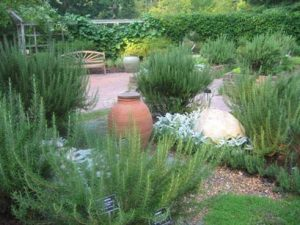 jardin-con-romero