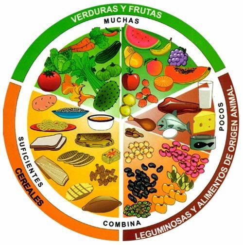 Alimentos que contienen carbohidratos la guia de las vitaminas - Que alimentos contienen carbohidratos ...