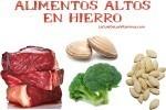 Alimentos altos en hierro