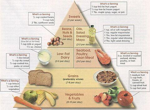 Que es la comida macrobi tica la guia de las vitaminas for Que es la comida molecular