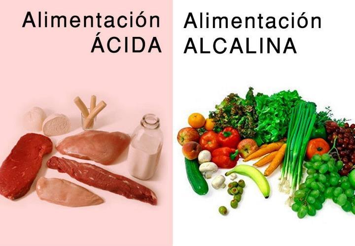 Alimentos cidos y alcalinos la gu a de las vitaminas - Alimentos que evitan el cancer ...