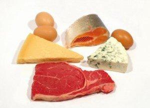 alimentos de origen animal para engordar