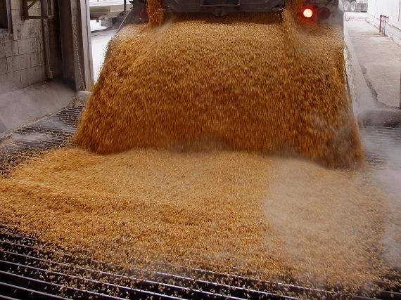jarabe-de-maiz-de-alta-fructosa