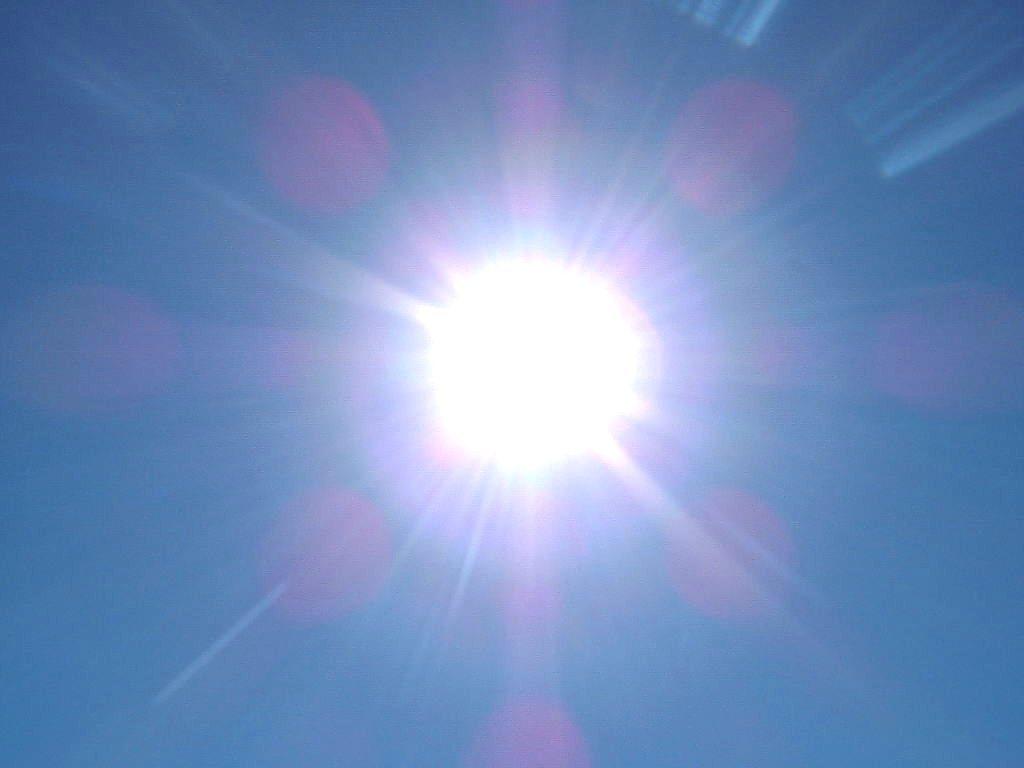 alergia al sol causas