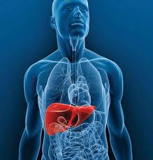 ´remedios caseros para el hígado