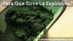 ¿Para qué sirve la Espirulina?