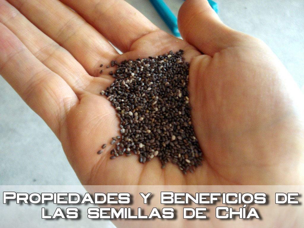 Propiedades y Beneficios de la Semilla de Chia