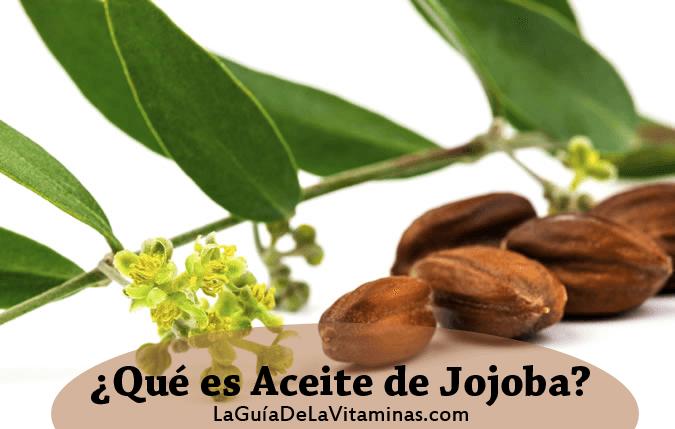 Aceite de jojoba qué es y para que se usa 6faac4d7ca27