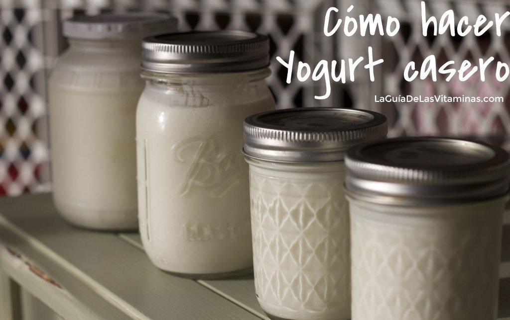Como hacer yogurt casero la guia de las vitaminas - Como hacer mousse de yogurt ...