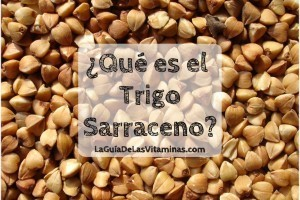 qu-e-es-el-trigo-sarraceno