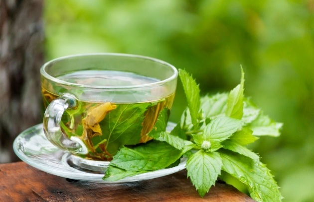 té verde-l-teanina