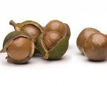 Beneficios y propiedades de las nueces de Macadamia