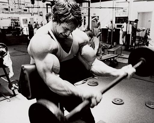 dieta-para-ganar-masa-muscular-2