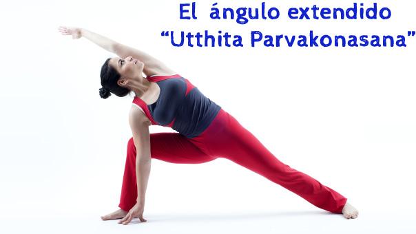 El--ángulo-extendido-o-Utthita-Parvakonasana