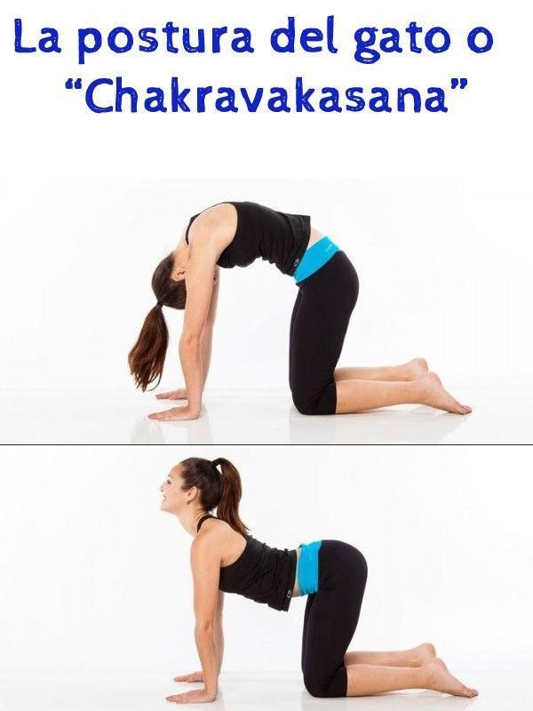 La-postura-del-gato-o-Chakravakasana