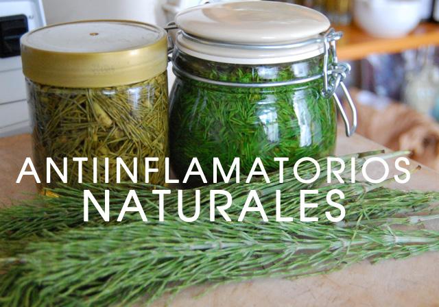 antiinflamatorios-naturales-1