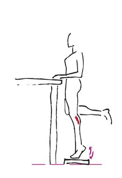 ejercicios-para-adelgazar-3