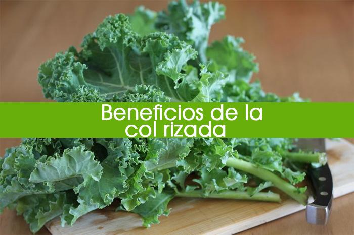 10 Beneficios Probados De La Col Rizada O Kale (Es