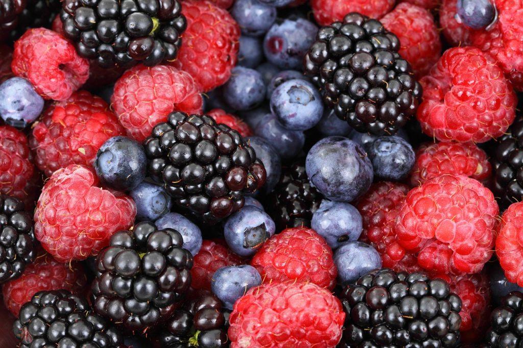 fruta en una dieta baja en carbohidratos-frutos rojos