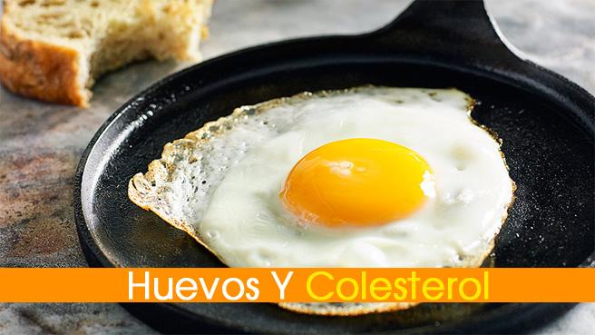 huevos-colesterol
