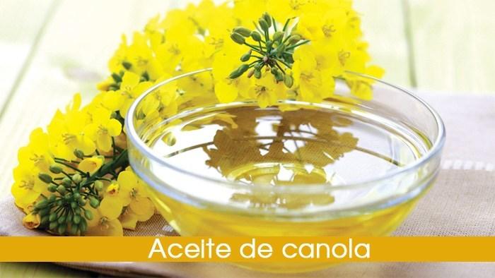 aceite de canola  u00bfes bueno o malo para t u00fa salud