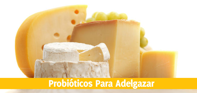 los probióticos ayudan a adelgazar