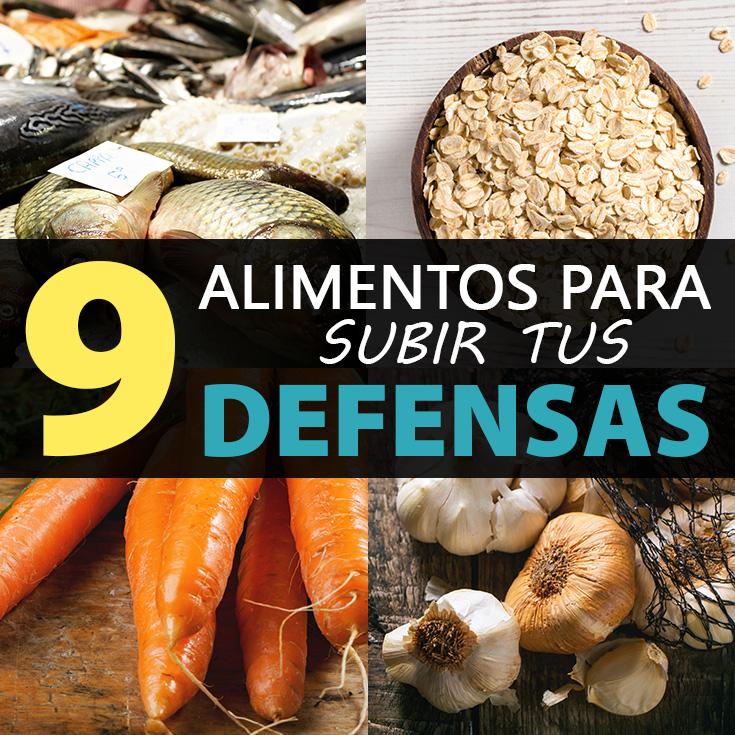 9 alimentos para subir tus defensas la gu a de las vitaminas - Alimentos para subir las defensas ...