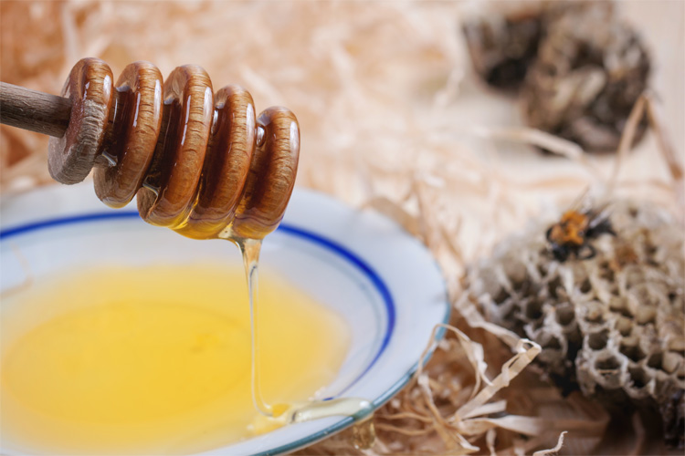 miel-plato-panal