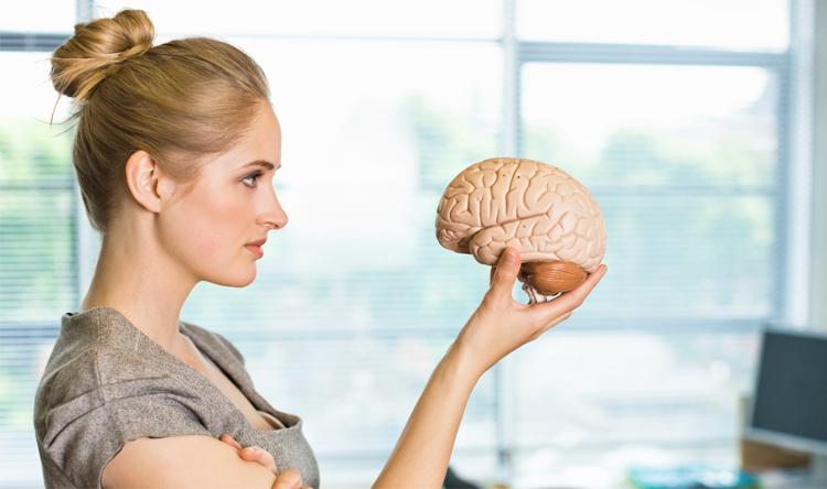 mujer-observando-cerebro-modelo
