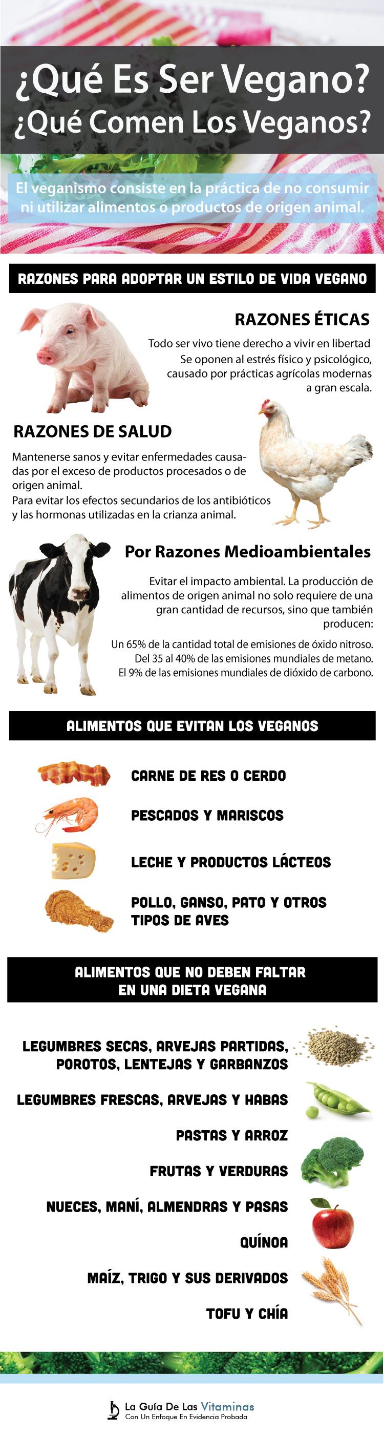¿Qué Es Vegano Y Qué Comen Los Veganos? - La Guía de las