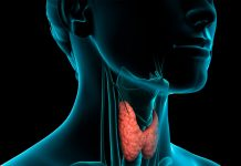 Alimentos prohibidos en hipotiroidismo