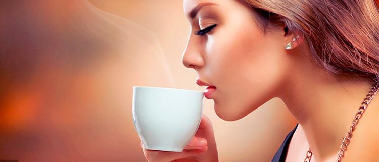 Sabila para adelgazar capsulas de cafe