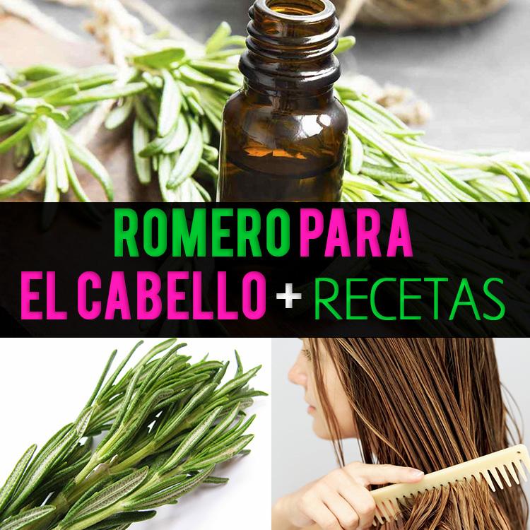 Romero Para El Cabello: Crecimiento, Usos, Beneficios + Recetas - La ...