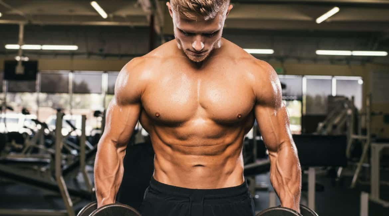 percursores de testosterona